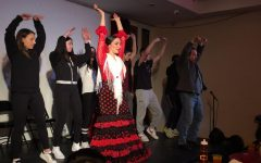 Spanish Flamenco Arts and Culture Trip