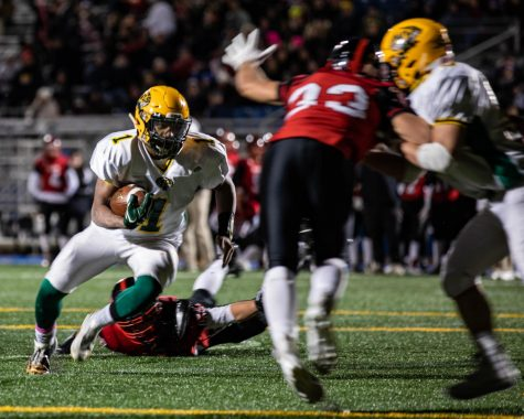 Lynbrook Sports: Top Moments of the Year