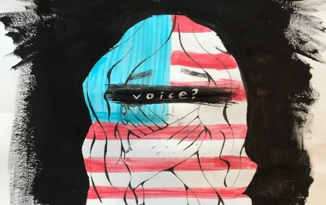 Fear of Voicing Political Opinion
