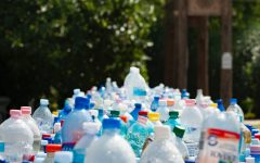 Reusable Water Bottle Craze: Do They Really Make an Impact?