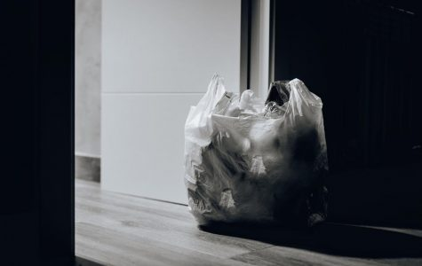 Saving the Environment: It's in the Bag