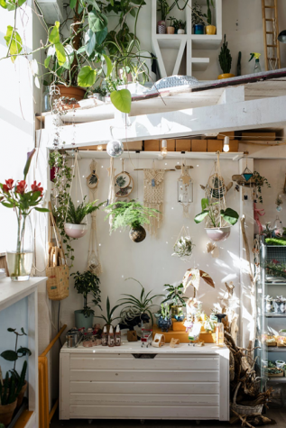 An example of one of the many ways to decorate a small room: botanical lights.