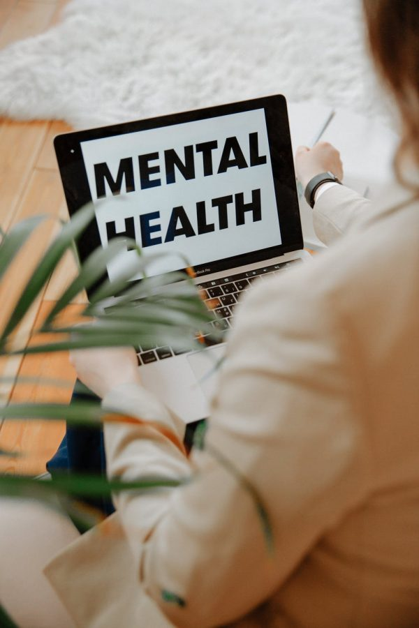 Mental+Health+Support+at+LHS